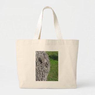 Pear tree trunk against green background large tote bag