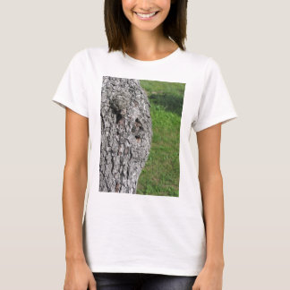 Pear tree trunk against green background T-Shirt