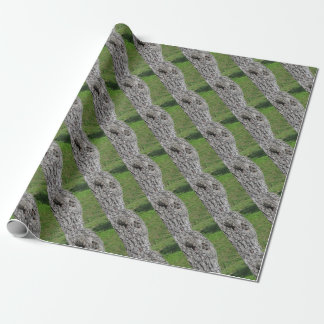 Pear tree trunk against green background wrapping paper