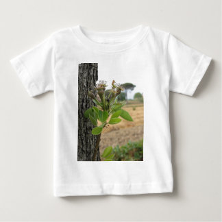 Pear tree twig with buds in spring  Tuscany, Italy Baby T-Shirt