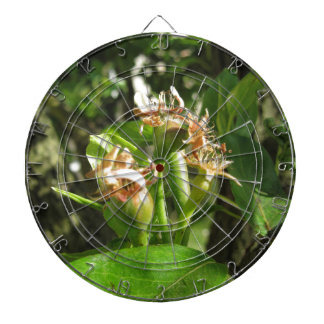 Pear tree twig with buds in spring  Tuscany, Italy Dartboard
