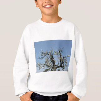 Pear tree with blossoms against the blue sky sweatshirt