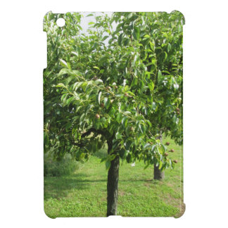 Pear tree with green leaves and red fruits case for the iPad mini