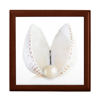 Pearl and seashell gift box