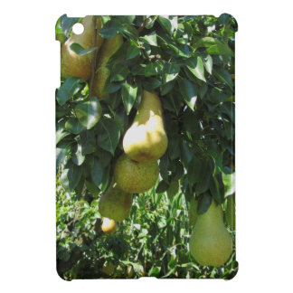 Pears on tree branches cover for the iPad mini
