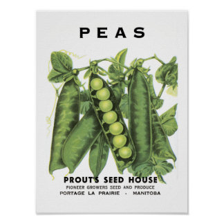 Peas Vintage Seed Packet Poster