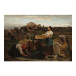 Peasant Women Harvesting  Rapeseed by Jules Breton Poster