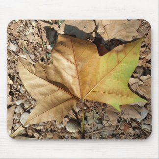 pebbles and leaves mouse pad
