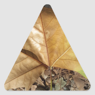 pebbles and leaves triangle sticker