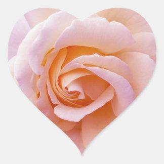 Pêche de jardin et rose anglais de rose sticker cœur