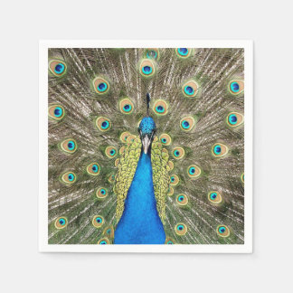 Pedro Peacock Feathers Colorful Wild Bird Peafowl Paper Napkin