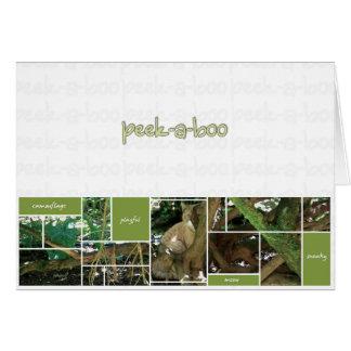 Peek-A-Boo Card
