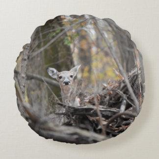 Peek a boo deer pillow