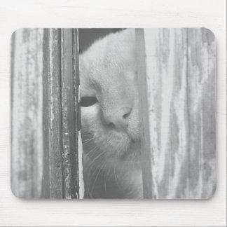 Peek a boo kitty mouse pad