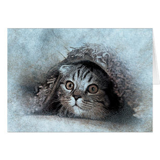Peek A Boo Kitty Portrait | Abstract | Watercolor Card