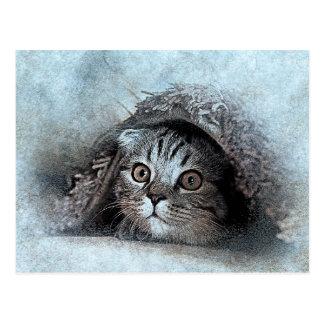 Peek A Boo Kitty Portrait | Abstract | Watercolor Postcard