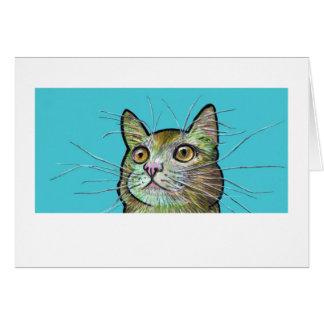 Peek-a-boo Timmy Cat Note Card