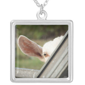 Peek a boo white goat! Cute goat waiting picture Silver Plated Necklace
