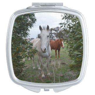 Peekaboo Horses, Makeup Mirrors
