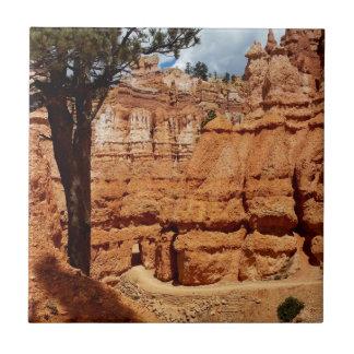 Peekaboo loop Bryce Canyon National park Utah Tile