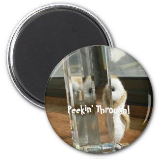 Peekin' Through 2 Inch Round Magnet