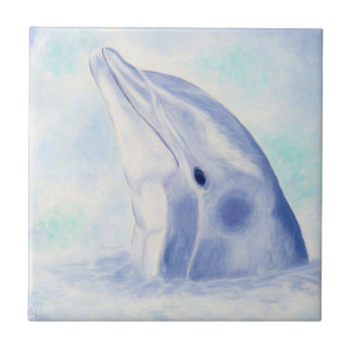 Peeking Dolphin Square Tile