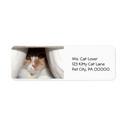 Peeking Kitten Return Address Labels