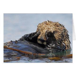 Peeking Sea Otter Card