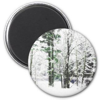 peeking through 2 inch round magnet