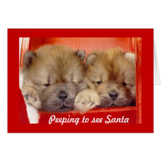 Peeping for Santa Card