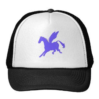 Pegasus tshirts. hats
