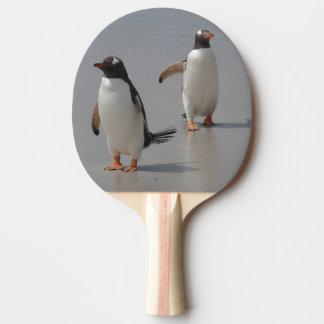 peguin ping pong paddle