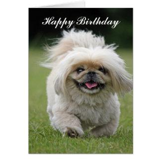 Pekingese dog happy birthday custom card