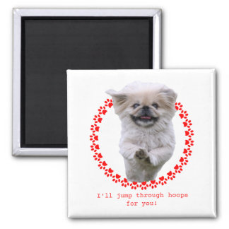 Pekingese dog jumping through pawprint circle square magnet