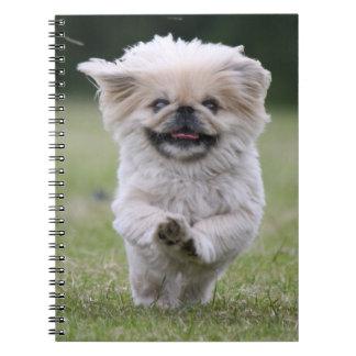 Pekingese dog notebook, cute photo, gift spiral notebook