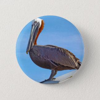 Pelican Again 2 Inch Round Button