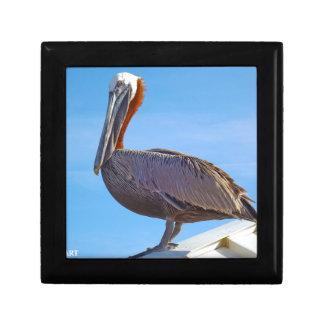 Pelican Again Gift Box