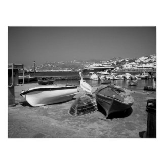 Pelican and Boats (Black and White) Poster