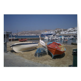 Pelican and Boats Card
