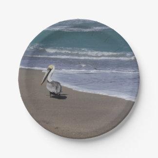 Pelican Beach Friends Paper Plate