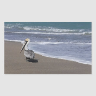 Pelican Beach Friends Sticker