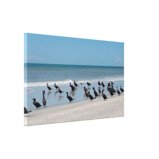 Pelican Beach Stretched Canvas Print