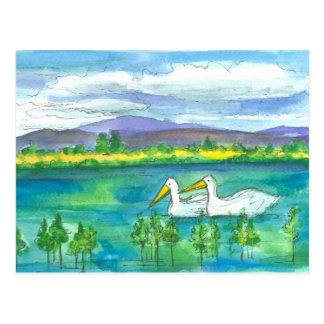 Pelican Birds Desert Mountain Lake Watercolor Postcard