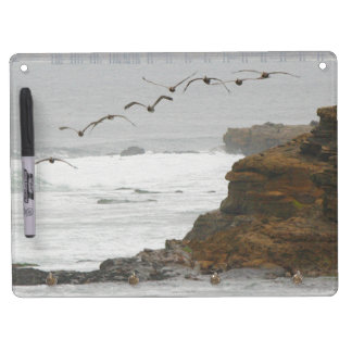 Pelican Birds Wildlife Animals Beach Ocean Dry Erase White Board