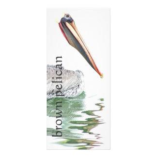 Pelican Birds Wildlife Animals Beach Ocean Rack Card