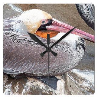 Pelican Birds Wildlife Animals Clocks