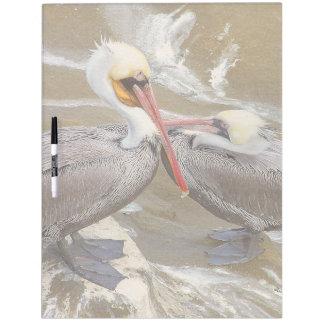 Pelican Birds Wildlife Animals Dry Erase Board