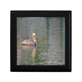 pelican floating in river colorful reflections gift box