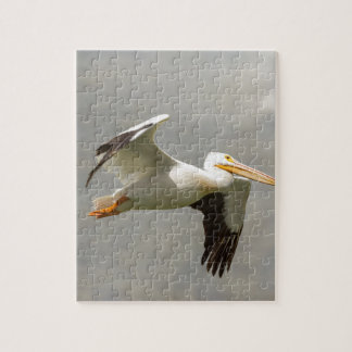 Pelican In Flight Jigsaw Puzzle