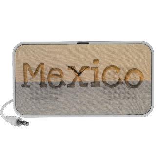 Pelican in Flight; Mexico Souvenir Laptop Speakers